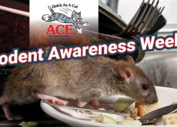 Rodent Awareness Week